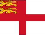 sarkflag1